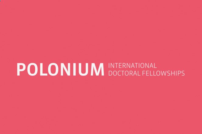 graphics - color: pink punch, inscription: POLONIUM International Doctoral Fellowships